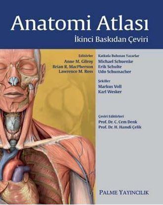 Resim Anatomi Atlası