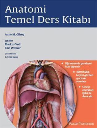 Resim Anatomi Temel Ders Kitabı