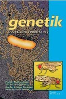 Resim Genetik Örnek Problemlerle