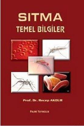 Resim Sıtma Temel Bilgileri
